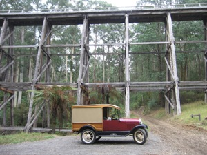 Suspension Bridge Noojee, Vic